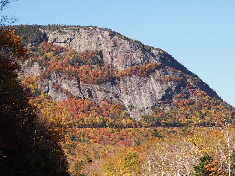 Mt Willard in fall foliage