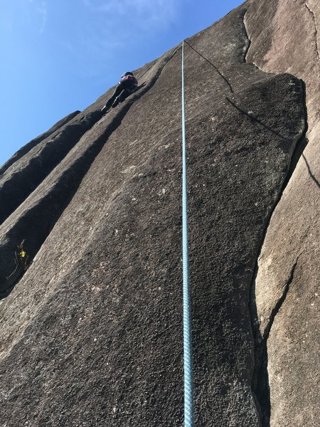 """Josie TRing on 'A dog's life."""" The start is 10 feet left of the top of P1 Japanese Gardens. P2 of JG  is the curving crack on the right."""