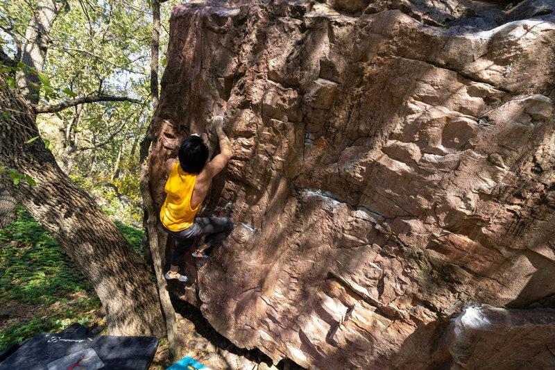 Climbing snaggle-tooth