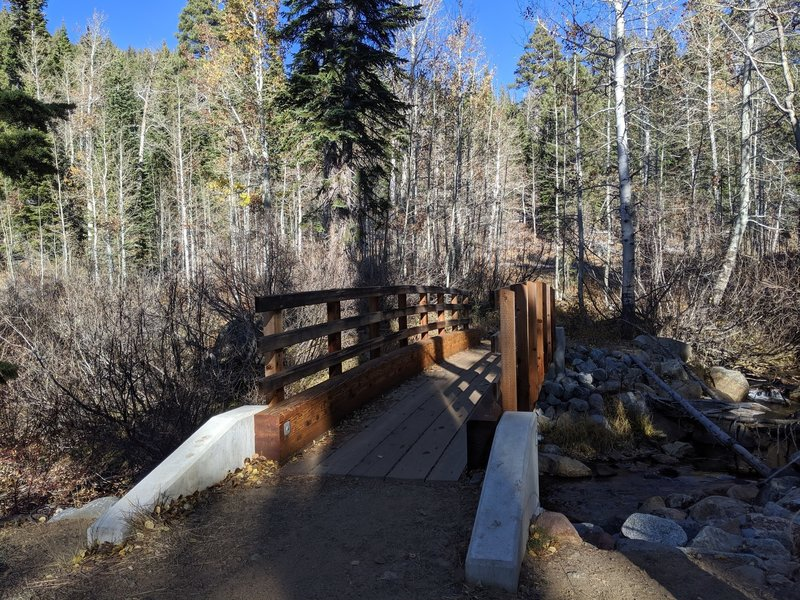 No need to cross the log anymore - This is the very obvious bridge you can see from the trail split- head over the bridge and in a minute or two take a left on a trail marked by a cairn.