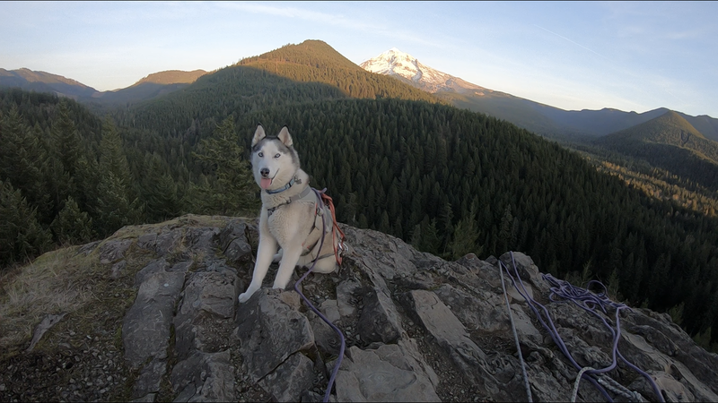 Odessa at the top of Frenchs Dome after climbing Giants Staircase