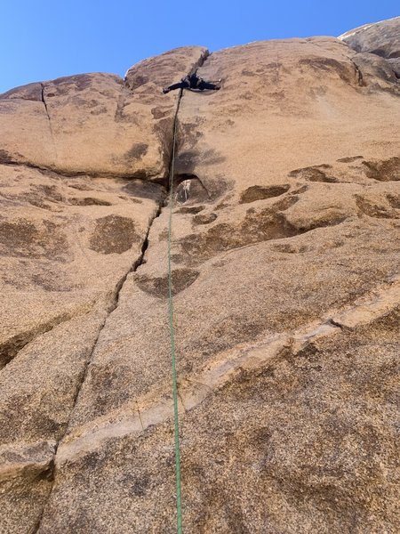 Bird picked a bad spot to soil himself. What a load! Climb was fun, though!