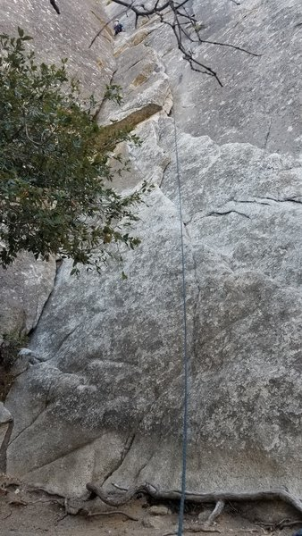 Pitch 1: From the climbers position, head left to a ledge with a bush with lots of webbing on it, can setup an anchor in the wall or belay from the tree I guess.