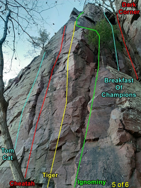 Cheatah, Ignominy, and other routes on the right side of the east-facing side of Bill's.