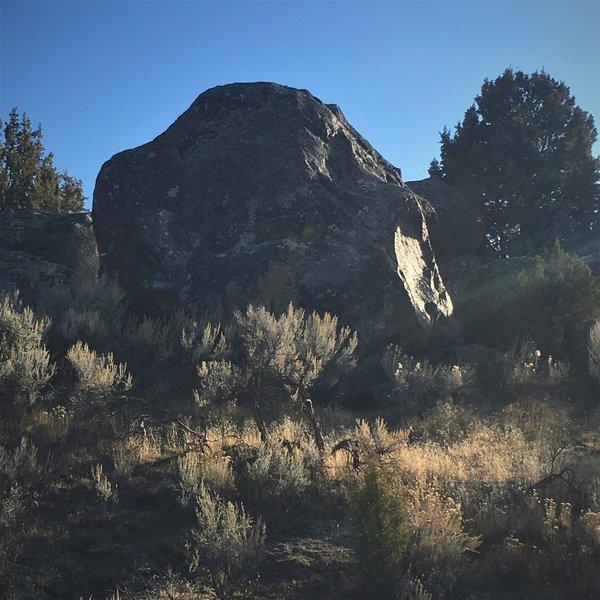 Martial Arts Boulder