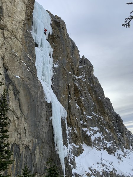 Following the last pitch of Amadeus.