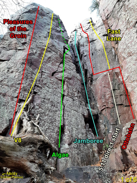 V8 tower area routes