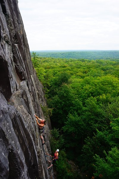 Paul making the first moves on the second pitch of Silver Sweetness.
