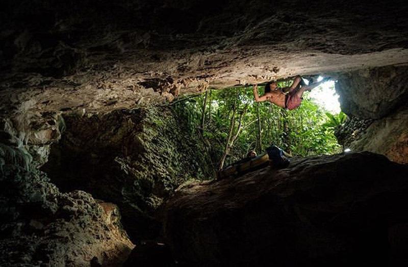 The great escape. Photo: Manuel Velez