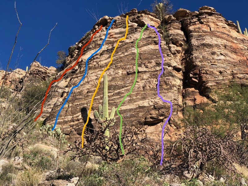 Routes at Cactus Ranch - left to right - Spiny Line, Flesh Wound, Jonah's Jaunt, Don't Tickle the Pickle, Thorny Issue