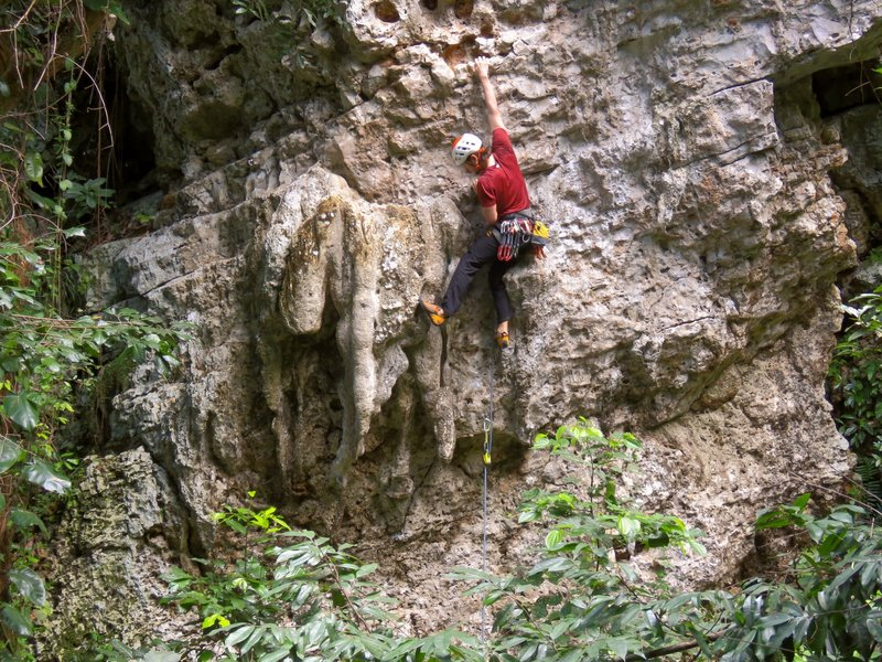 Reaching for a way out of the tufas.