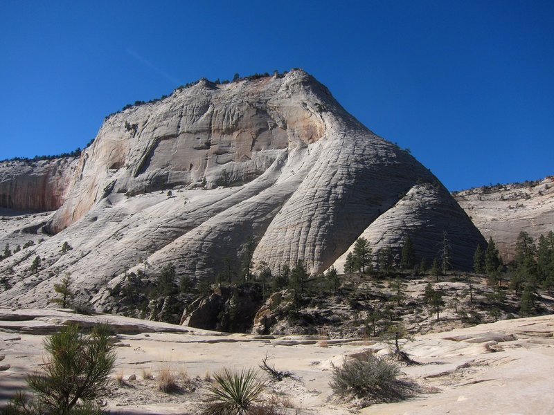 East side of Cathedral Mountain with the NE buttress on looker's right (shade/sun line).