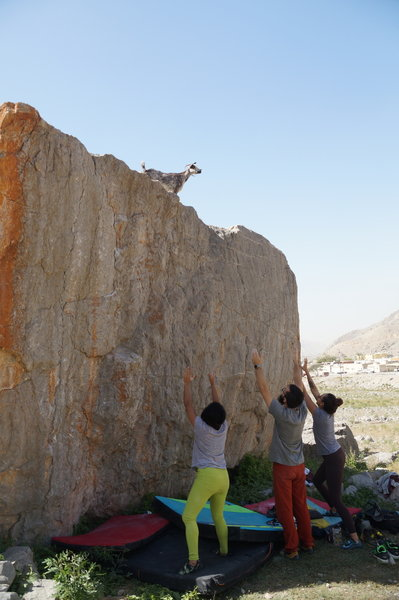 Spotting the OGs of the bouldering game