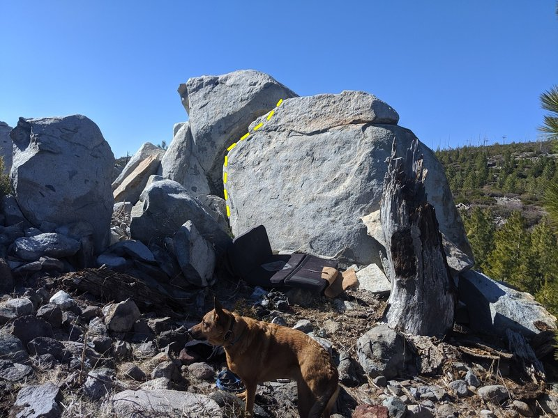Flakey granite; solid dog