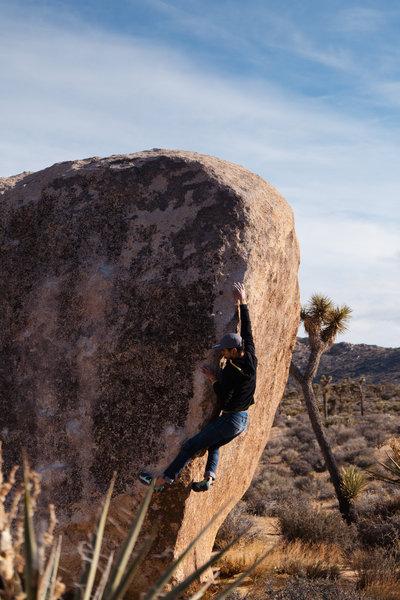 Midroute on Palm-O-Granite