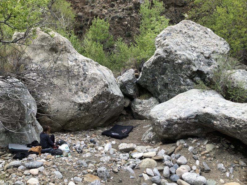 """The """"main"""" area. Fetauring the Perplexity boulder (left) and Obligatory boulder (right)"""