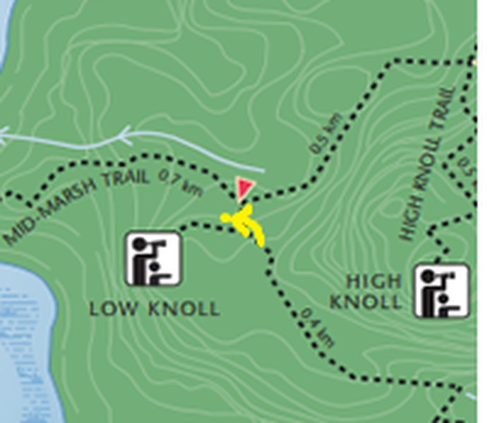 The boulder is right at the intersection of low knoll and the main trail. if you carry on about 10 meters bush whacking you should find it slightly West from the intersection.