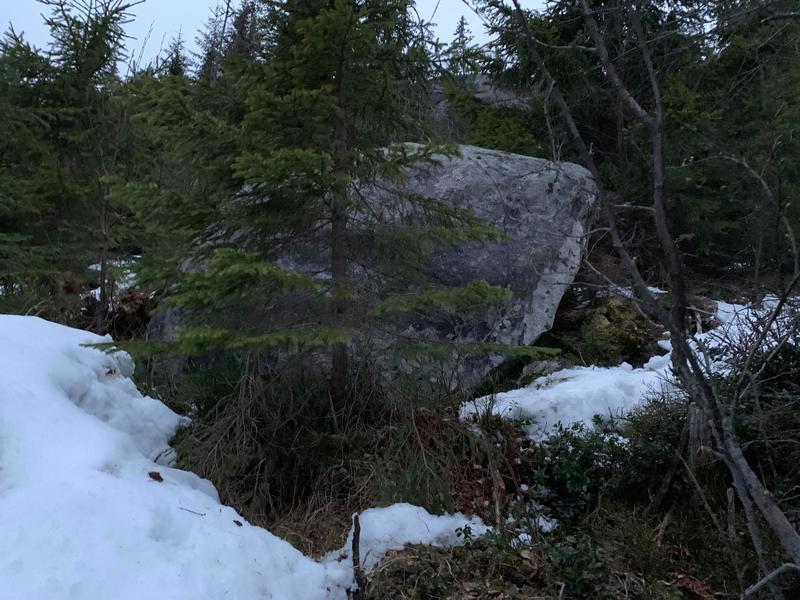 Free standing boulder
