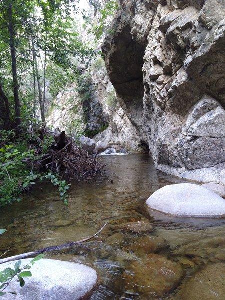Plunge Creek, San Bernardino Mountains