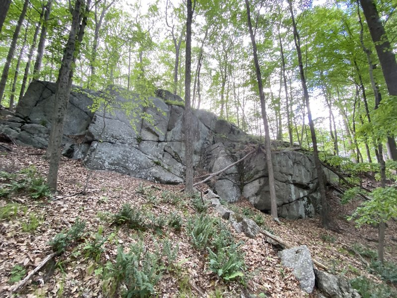 This is the cliff band where the Mallard boulder is located.
