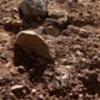 Look at those boulders!