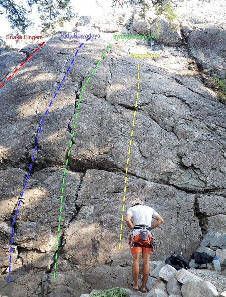 Fun Rock - Fun Wall (Snake Fingers to Cream)