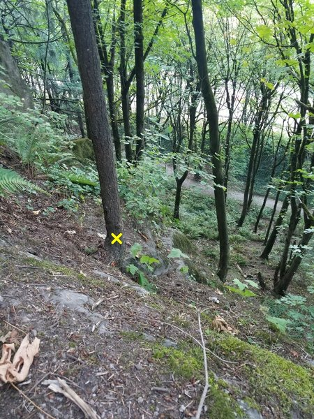 Photo from Glenn's Route anchors towards the highway. This tree is the anchor for Invisible Man and Temporary Arete below