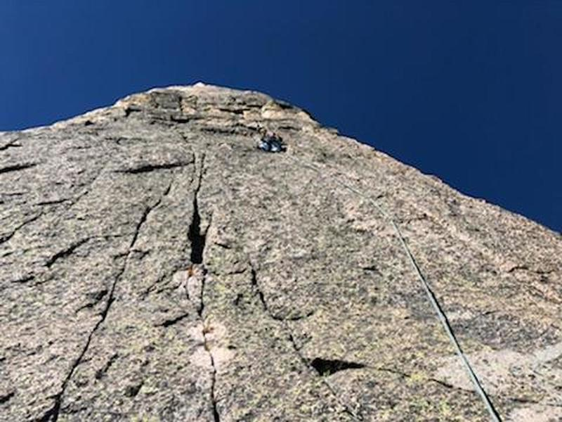 High on the Flying Buttress