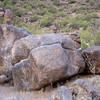 Photo of Alka Smelser Boulder facing west