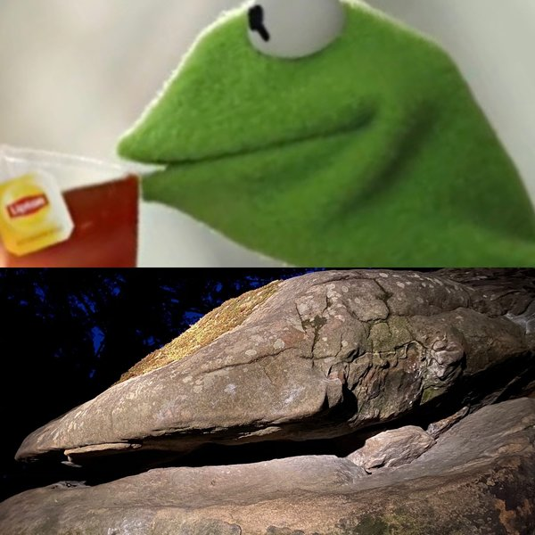 Kermit's reaction to his area getting redacted