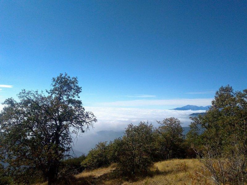 Clouds below the rim, San Bernardino Mountains