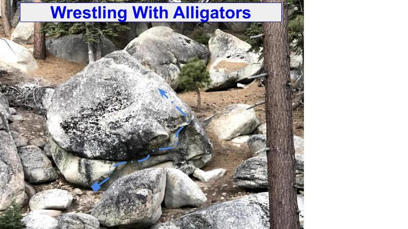 Wrestling With Alligators is another awesome, super fun problem in the creek area, located low on the hill slightly north west of the Bed Wetter boulder. FA Joe DeLuca