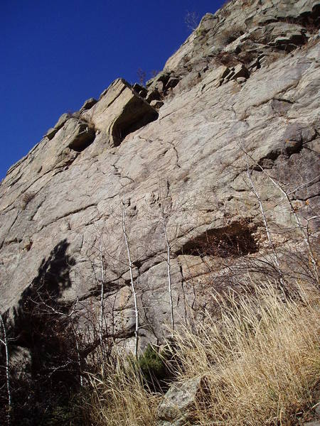 """The route follows a thin crack in the center of the photo just right of a small aspen. Pass the left edge of the route and angle left a bit, then leave the """"left angling crack"""" and climb the face into the right facing, left leaning corner."""