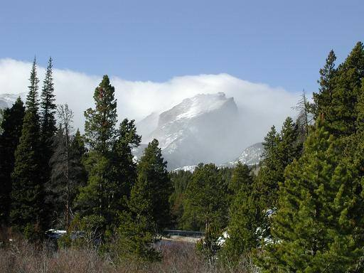 Taken on Bear Lake Rd. near the Beaver Meadows Entrance of the RMNP on a cold, windy winter day in Jan. 2002.