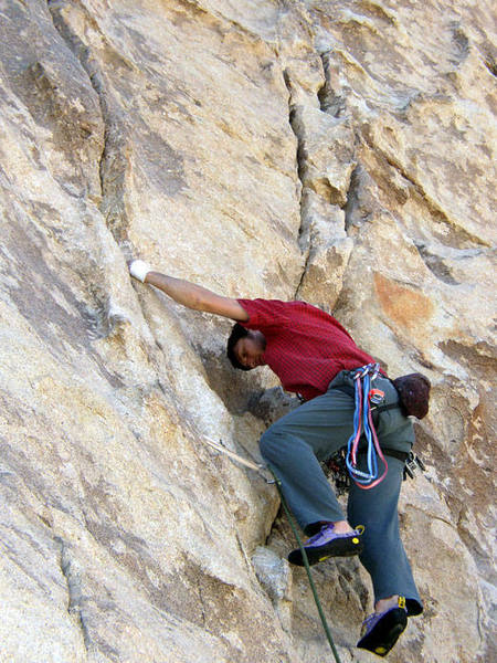 first trad lead at JTree