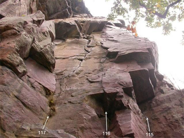 Cul-De-Sac (115), Fibula Cracks (116), and Tibia Crack (117).