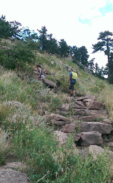 A steeper section of trail with lots of rock steps