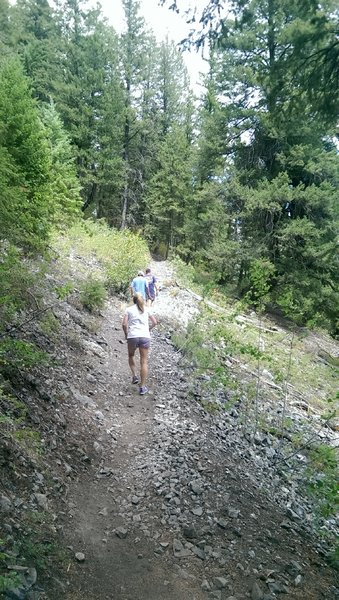Bald Mountain Trail starts out paralleling the Big Wood River