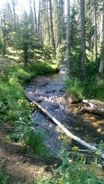 The trail follows the Fourth of July Creek along this section