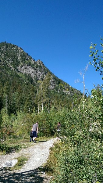 Early going on the North Tenmile Creek trail does not offer much shade