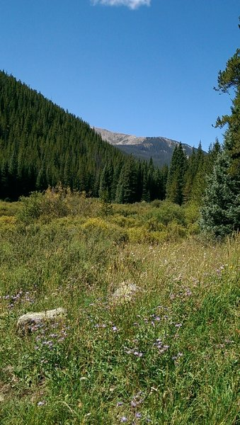 Uneva Peak looms over the valley