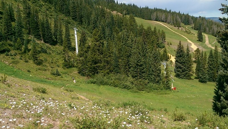 Lower open slopes of Kinnickinnick trail pass through ski operations