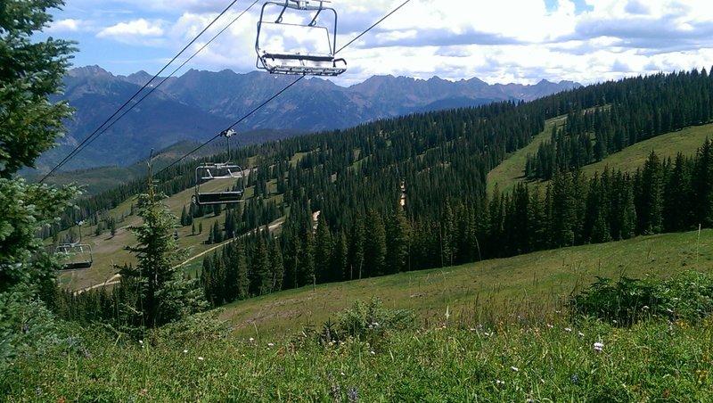 Ski run meadows full of wildflowers on Grand Escape