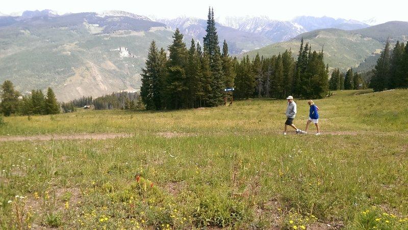 Gentle open slopes of Upper Fireweed