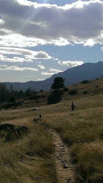 Hikers and dogs enjoy the Cairn Trail