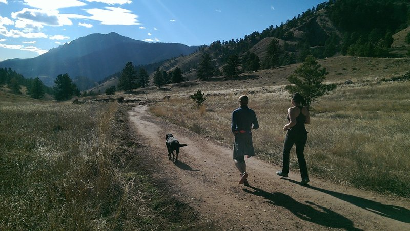 Trail runners enjoy their winter workout