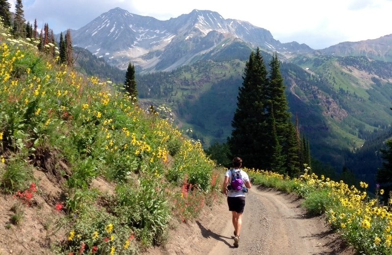 Michelle takes in views of Snowmass Mountain during the spectacular descent into the Lead King Basin.