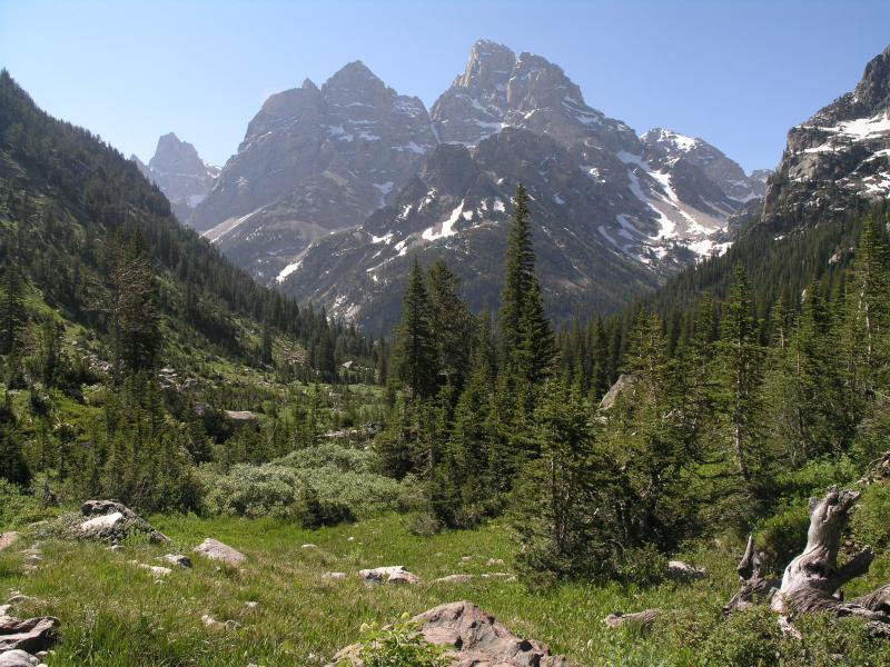 Grand Teton as seen from a meadow on North Fork Cascade Canyon trail.
