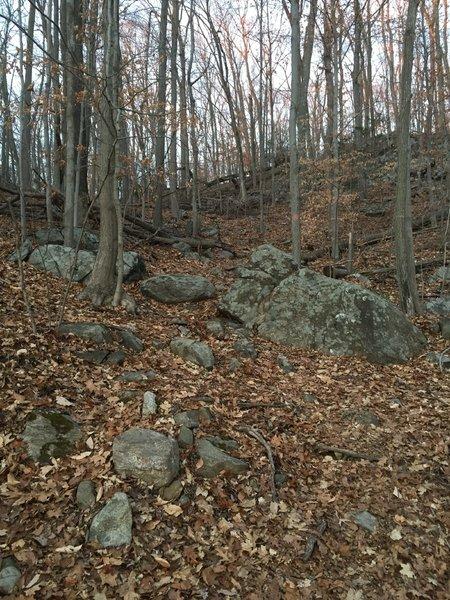 The steep start of Orange Access Trail - West.