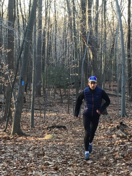 A runner on Blue Trail